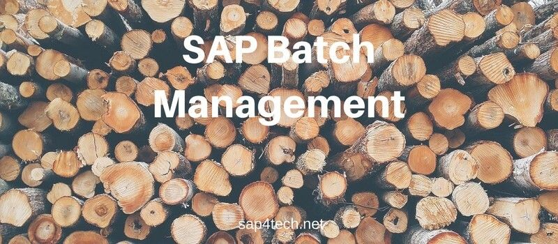 SAP Batch Management Tcodes, Tables and User Exits, BADI